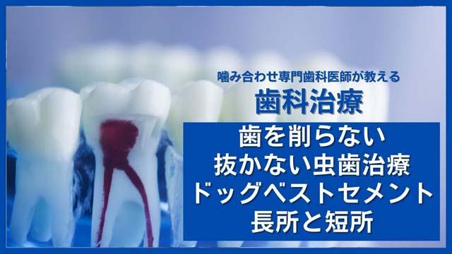 ドッグベスセメントの長所と短所を解説|香川県高松市の咬み合わせ専門 吉本歯科医院