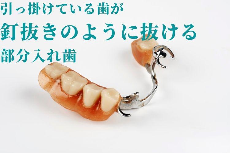 kuginukinoyouni.jpg