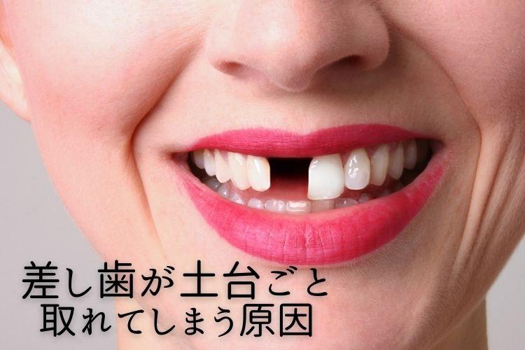 sashigadodaigoto.jpg