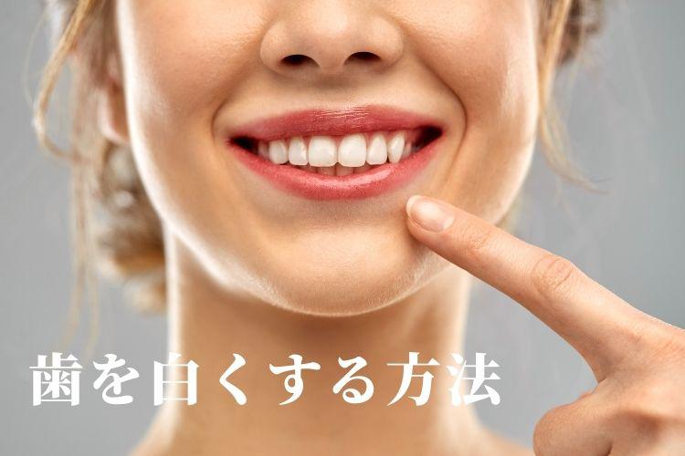 shinbishikano.jpg