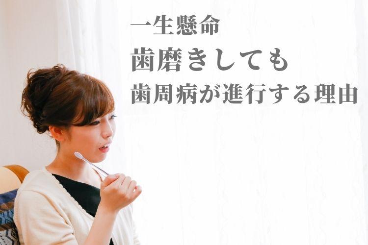 shinkouwake.jpg
